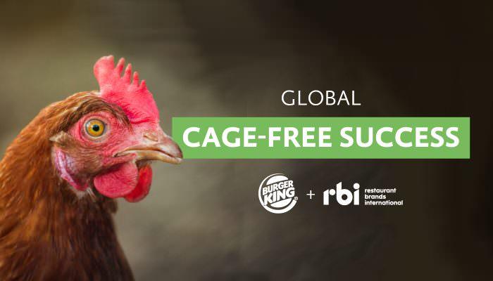 Cage free success Burger King