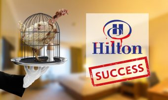 Success: Hilton Goes Cage-Free