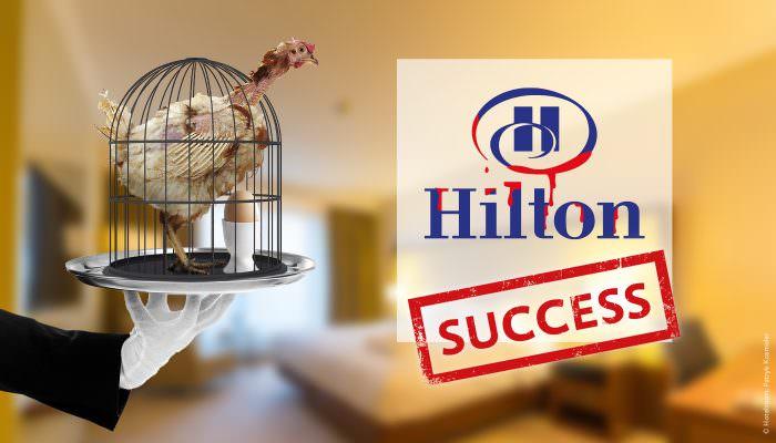 Success Hilton Petition