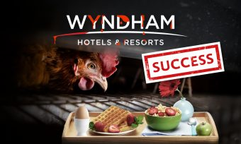 Success: Wyndham no longer serves cage eggs
