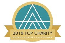 Effective Giving: We Are a 2019 Top Charity!