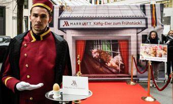 Marriott Renounces Cage Eggs